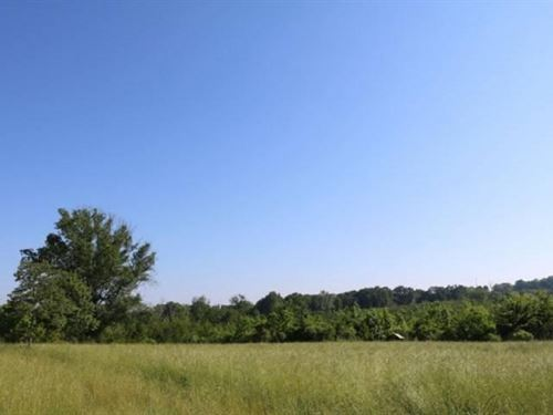 130 Acres In Scott County : Morton : Scott County : Mississippi