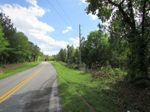 69.5 Acres Timberland For Sale Jasp : Louin : Jasper County : Mississippi