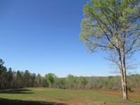 Nice Country Setting On 60+/- Acres : Lafayette : Chambers County : Alabama