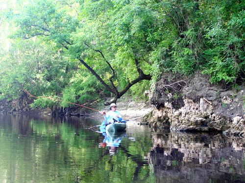 Withlacoochee Bluff : Madison : Florida