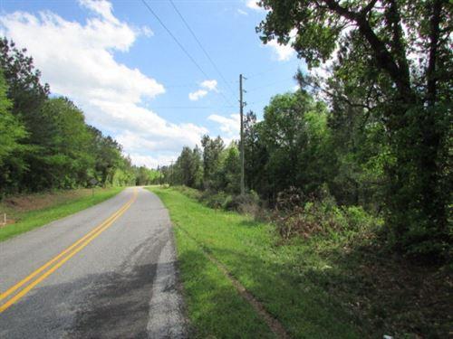 14.5 Acres For Sale In Jasper Count : Louin : Jasper County : Mississippi