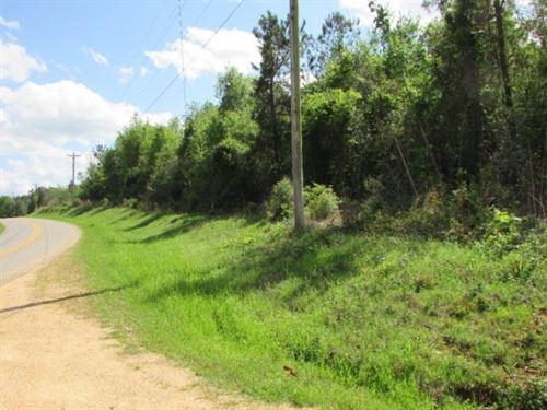 15 Acres Timberland For Sale Jasper : Louin : Jasper County : Mississippi