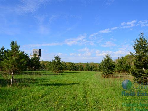 Hunting Land In Tigerton, Shawano C : Tigerton : Shawano County : Wisconsin