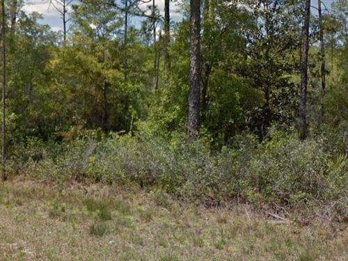 Walton County, Fl $ 15,999 Neg : Defuniak Springs : Walton County : Florida