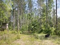 Big Residential Lot No. 4 : Verbena : Chilton County : Alabama