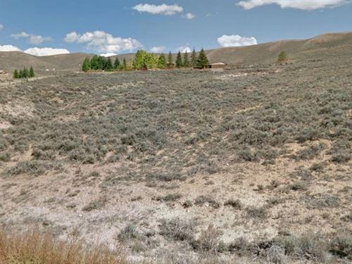 Gunnison County, Co $299,000 Neg : Gunnison : Colorado
