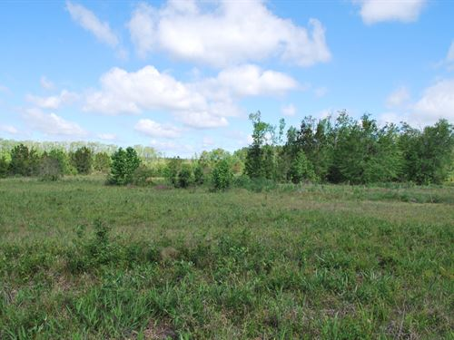 Pennick Plantation : Brunswick : Glynn County : Georgia