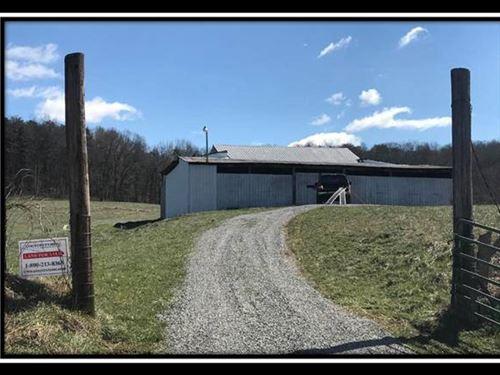 Rustic Barn On 5 Acres : Patriot : Gallia County : Ohio