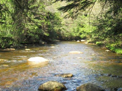 Riverfront Land Ny Near Adirondacks : Remsen : Oneida County : New York