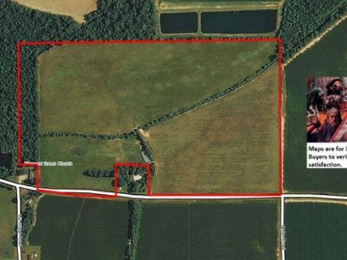 78 Ac - Pasture With Great Home Sit : Baskin : Franklin Parish : Louisiana
