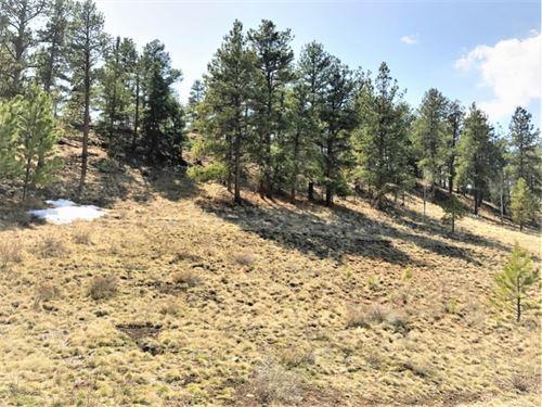 Beaver Mountain Lot 55 : South Fork : Rio Grande County : Colorado
