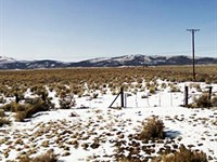 Large Lot Of Clear Land : Madeline : Lassen County : California