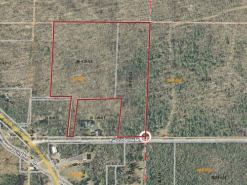 Gorgeous, Wooded 25 Acres : Winchester : Vilas County : Wisconsin