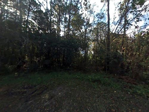 3.37 Acres In Saint Augustine, FL : Saint Augustine : Saint Johns County : Florida