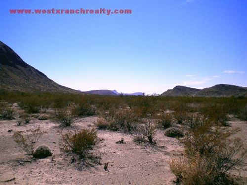 Tract 8181 : Terlingua : Brewster County : Texas