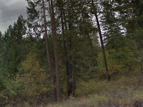 Lake County, Mt $30,000 Neg : Poison : Lake County : Montana