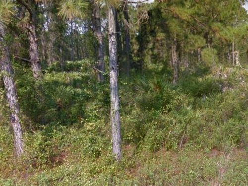 Lee County, Fl $55,900 Neg : Lehigh Acres : Lee County : Florida