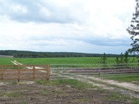 Prime Farmland : Yonkers : Dodge County : Georgia