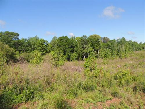 53.74 Ac On Forrest Rd : Grantville : Meriwether County : Georgia
