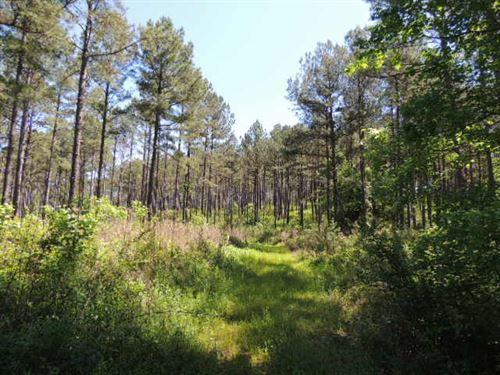 235.73 Ac On Brown Creek Road : Shiloh : Harris County : Georgia