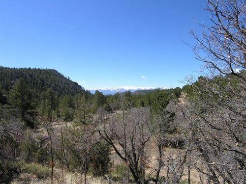 4868972 - This Lot Has Everything : Cotopaxi : Fremont County : Colorado