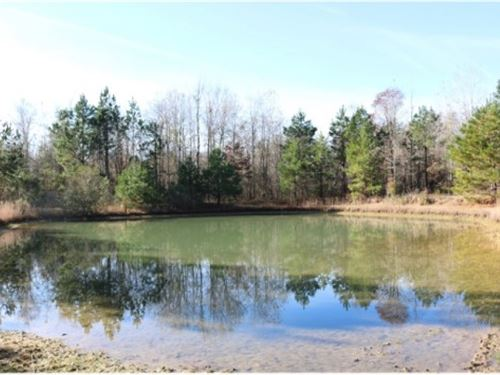 90.93 Acres In Simpson County : Pinola : Simpson County : Mississippi