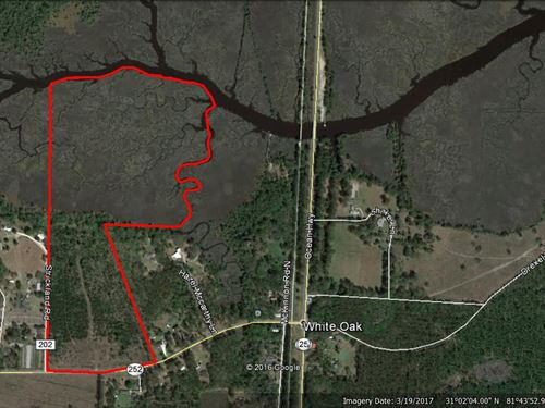63 Acres In Great Location On Marsh : Woodbine : Camden County : Georgia