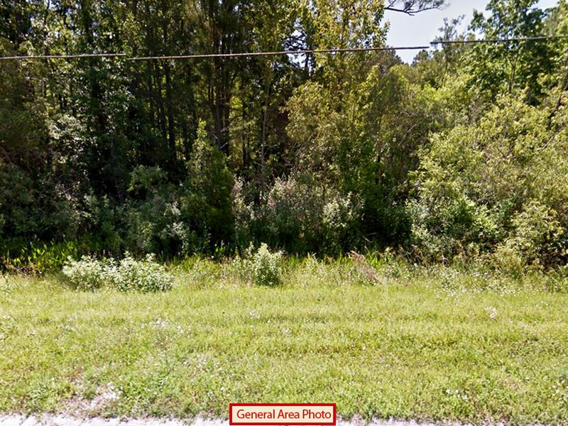 Large Residential Property : Trespass Trail : Lake County : Florida