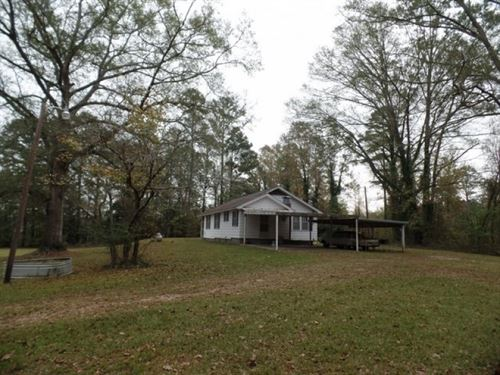 176 Acres In Newton County : Little Rock : Newton County : Mississippi