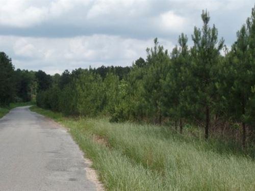 33 Acres In Newton County : Newton : Mississippi