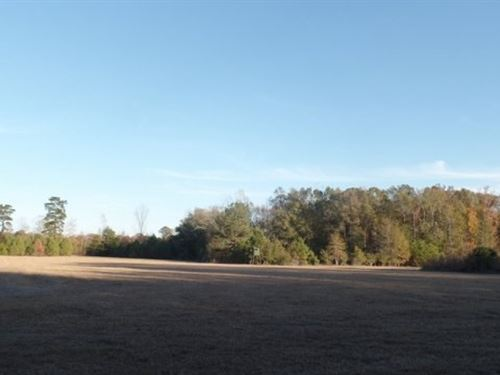 48 Acres In Clarke County : Shubuta : Clarke County : Mississippi
