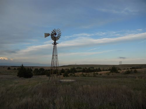 Russell County Grass And Hunting : Russell : Kansas