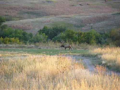 Pine Ridge Wildlife Ranch : Crawford : Sioux County : Nebraska