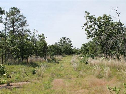 Oklahoma, Pittsburg County : Daisy : Pittsburg County : Oklahoma