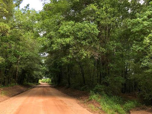 17 Ac Bluewater Road : Schwab City : Polk County : Texas