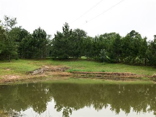 1.4 Acres Fm 1374 : Huntsville : Walker County : Texas