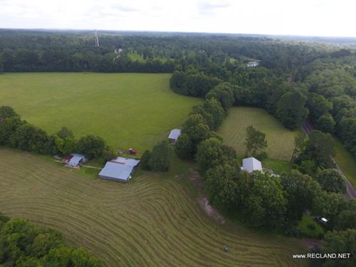 48 Ac - Pasture & Homes Near To : Jasper : Texas