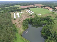 Four House Broiler Farm : Banks : Pike County : Alabama