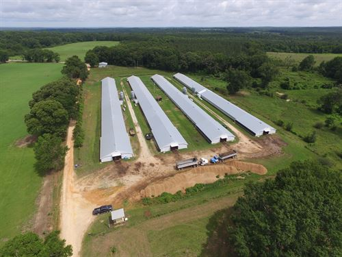 Four House Broiler Farm : Clio : Barbour County : Alabama
