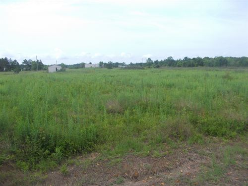 Homesite Near Millbrook, Prattville : Millbrook : Elmore County : Alabama