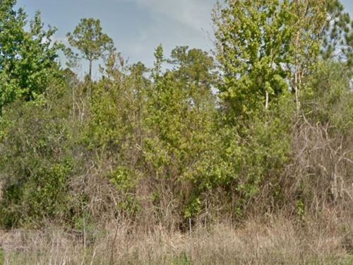 Polk County, Fl $10,500 Neg : Polk City : Polk County : Florida