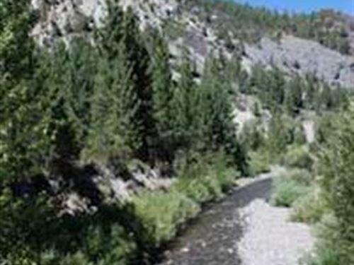 California 40 Ac Miningclaim Creeks : Markleeville : Alpine County : California