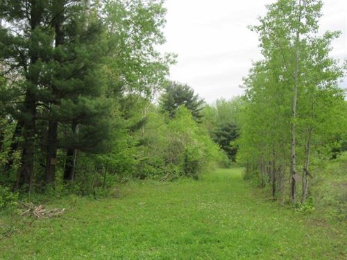 37 Acres Hunting Land Watertown Ny : Lorraine : Jefferson County : New York