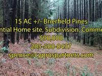 Brierfield Pines : Brierfield : Bibb County : Alabama