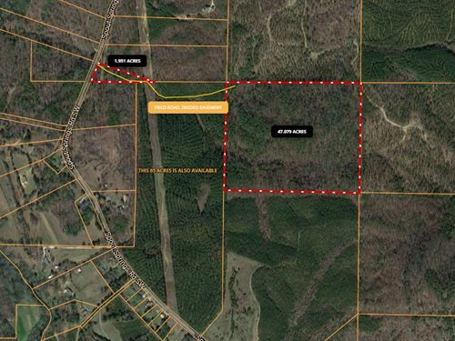 49 Acres On Spout Springs Road : Rome : Floyd County : Georgia