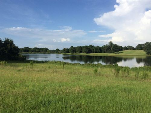 80 Acres Pasture & Timberland : Flora : Madison County : Mississippi
