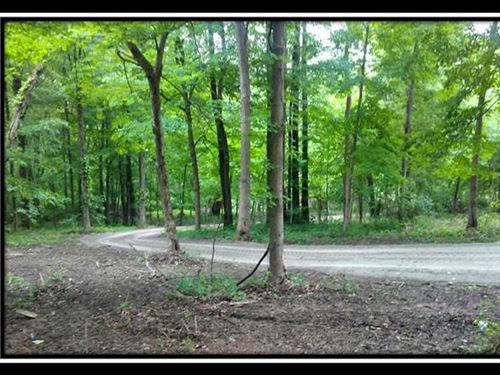 Beautiful 43 Acre Wooded Tract : Hopewell : Licking County : Ohio