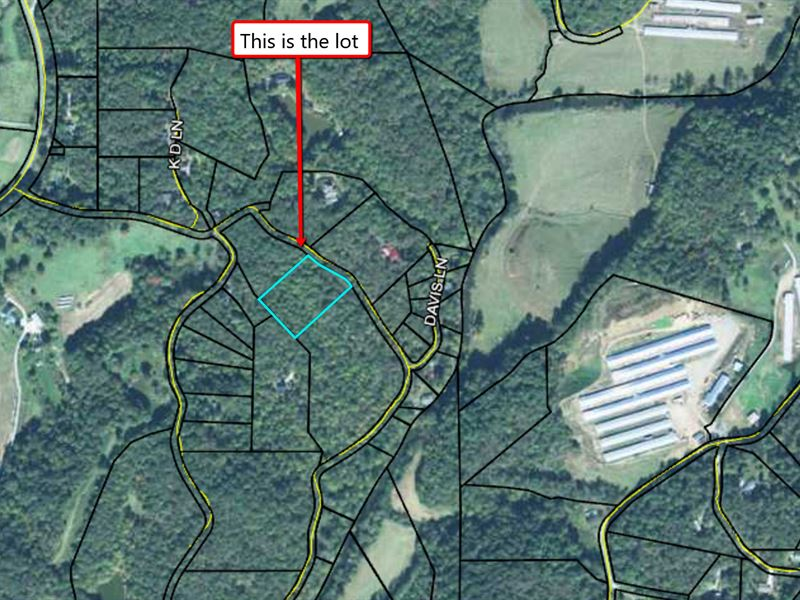 Wholesale Lot In Ellijay Georgia : Land for Sale by Owner