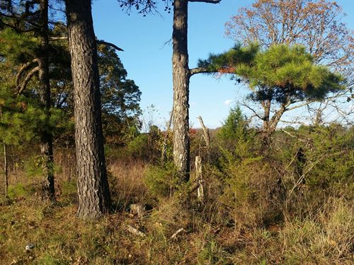 Farm Land For Sale : Shirley : Van Buren County : Arkansas