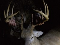 108 Acres With Big Buck Hunting : Rupert : Taylor County : Georgia